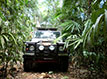 Land Rover on Jungle trail in Belize