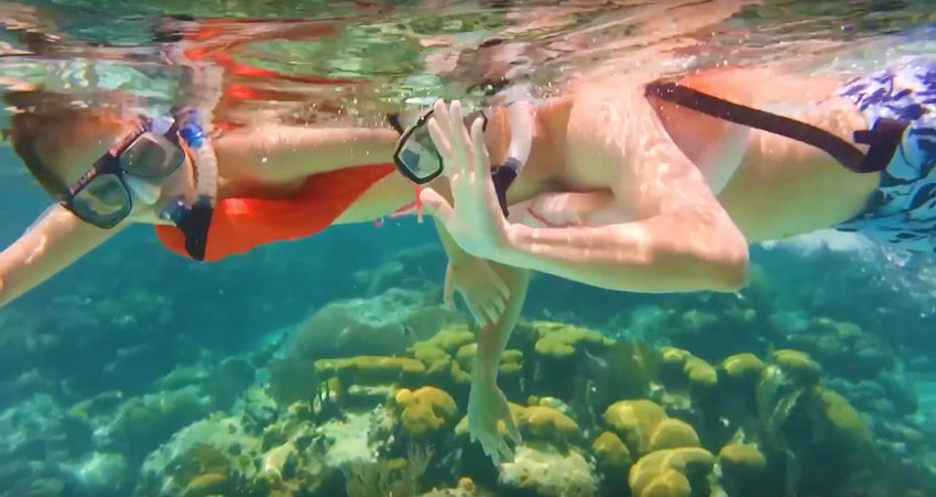Snorkeling Hol Chan In Belize With Belize Boutique Resort and Spa