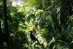 zip lining above the Belize jungle